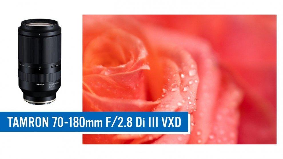 タムロン 70-180mm F/2.8 Di III VXD で母の日に贈る花の写真を撮る